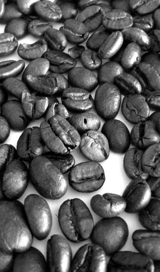 Mobile Espressobar - Kaffeebohnen