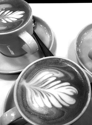 Latte 3klein_sw2